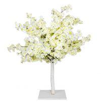 Arbre Cerisier Blanc 90cm